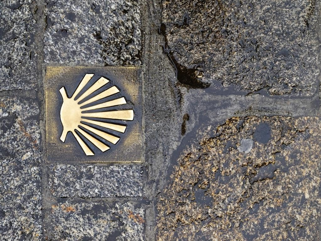 Why is the Scallop Shell the Symbol of the Camino de Santiago?
