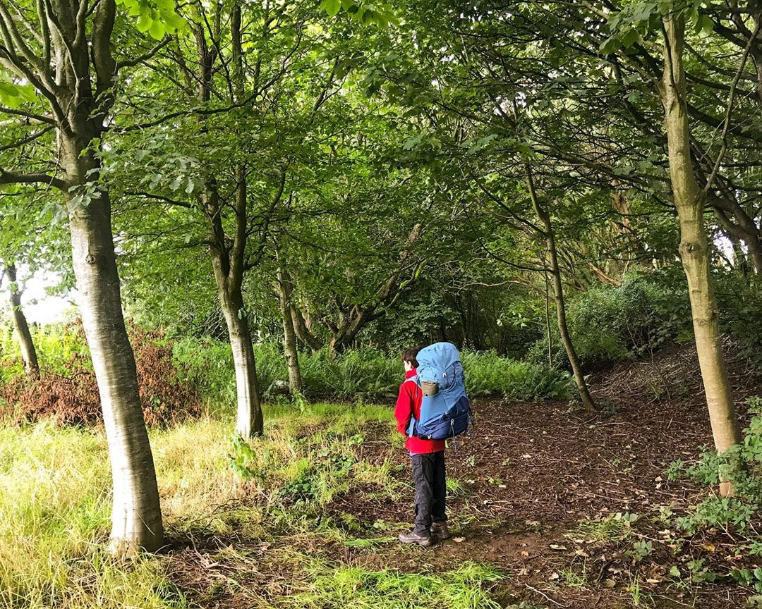 The Best Hiking Backpacks for Children